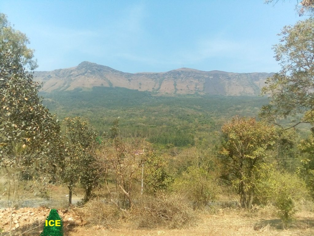 Coffee Estate for Sale in Chikmagalur and Farm House with